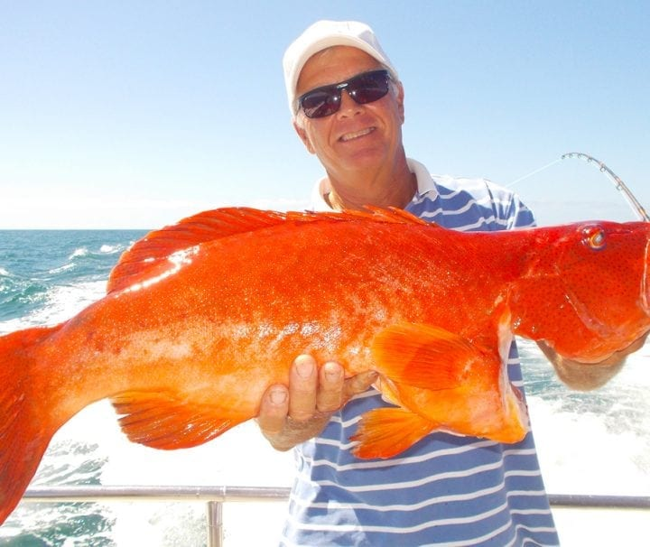 Fishing Charters and Tours