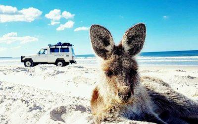 4WD Bribie Island Tours
