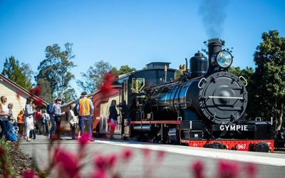 Steam Train Adventures
